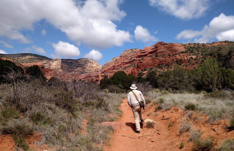 Walking Around The Mountain – by Sue Herzog